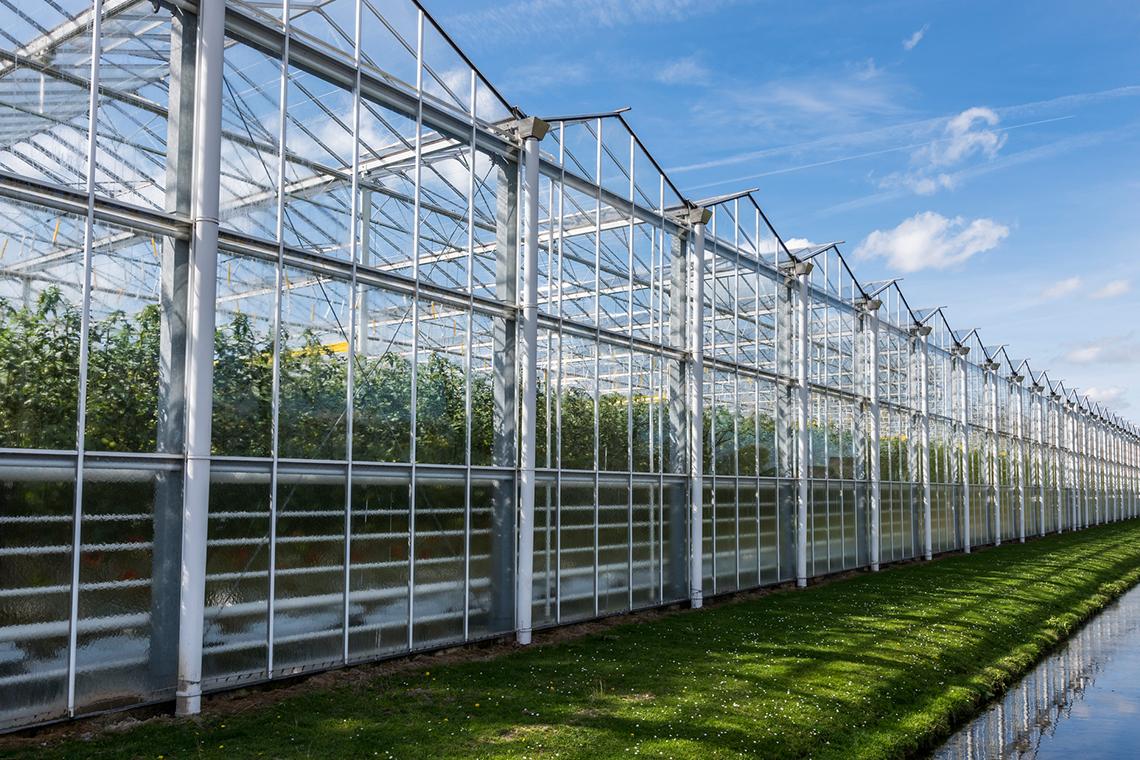 Subsidie Voor Energiebesparende Maatregelen In De Glastuinbouw